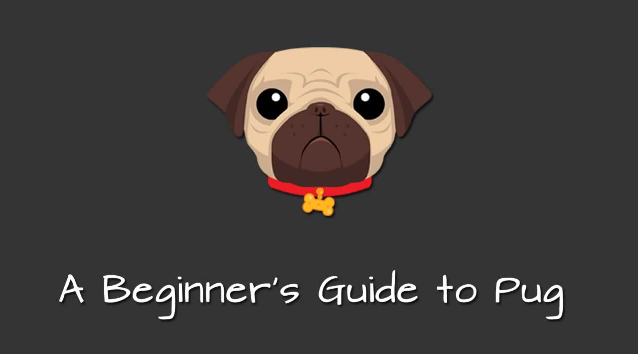 A Beginners Guide To Pug